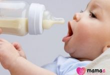 Photo of Sữa non là gì? 4 thành phần quan trọng và 7 tác dụng đặc biệt của sữa non