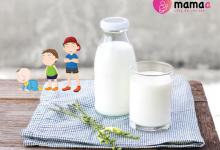 Photo of Top 7 tác dụng quan trọng nhất của sữa non colostrum