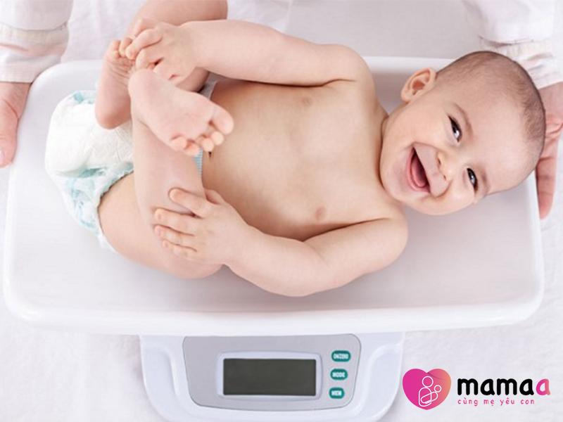 Mama sữa non giúp trẻ tăng cân nhanh chóng
