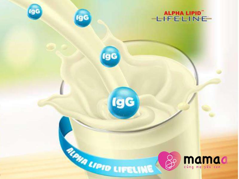 sữa non Alpha Lipid cung cấp các kháng thể IgG