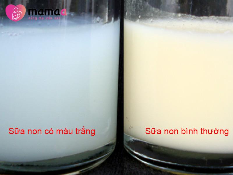 Sữa non có màu trắng bất thường và sữa non bình thường