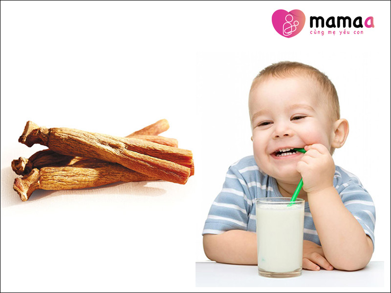 Hồng sâm có trong sữa non cho bé