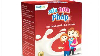 Photo of Sữa non Pháp Ecolife có tốt không? Review thực tế từ người dùng