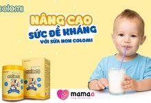 Photo of Sữa non Colomi có tốt không? Review sữa non colomi từ chuyên gia và khách hàng